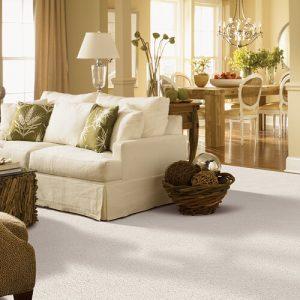 White carpet for living room | Owens Supply Company, Inc