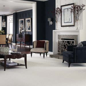 White Carpet in Living room | Owens Supply Company, Inc
