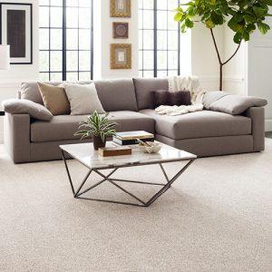 Comfortable carpet | Owens Supply Company, Inc
